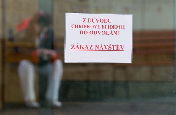 Institute of Health Warns of Influenza Epidemic - Czech Points