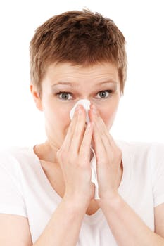 Flu Kills 33 So Far This Season - Czech Points