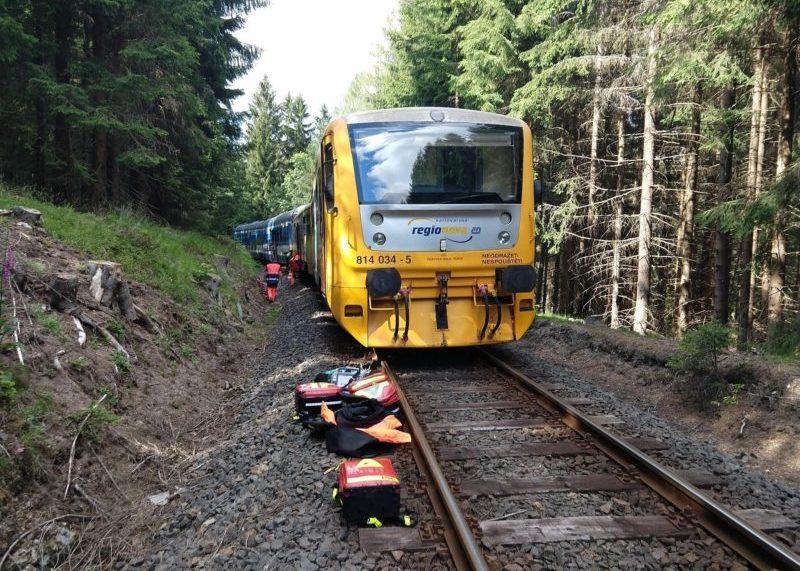 Dozens injured, 2 dead in train collision near Pernink - Czech Points