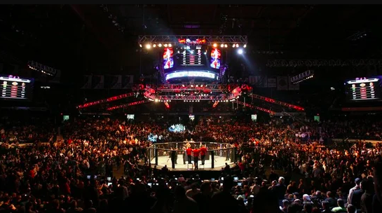 UFC announces Prague debut in 2019 - Czech Points